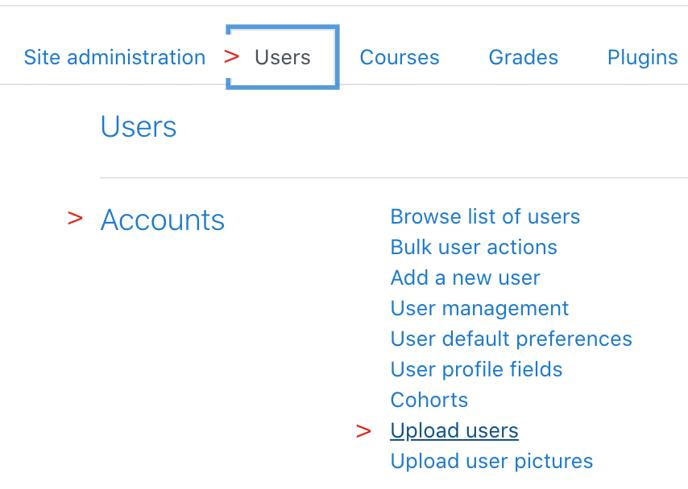 user accounts upload users