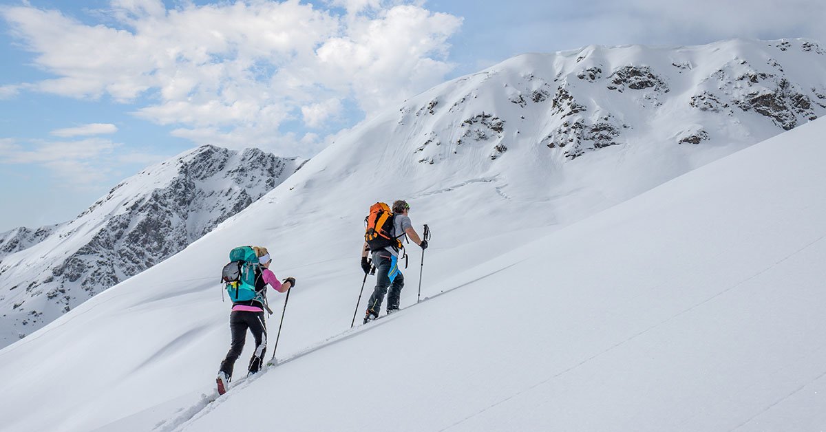 image thumbnail case study Canadian Avalanche Association with Lambda Solutions